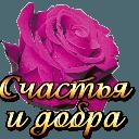 https://dp.mycdn.me/getImage?photoId=835161997156&type=4